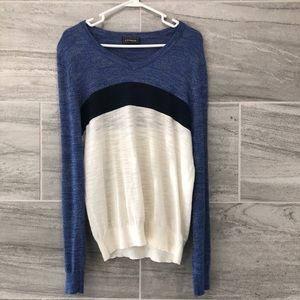 Express mens v neck sweater